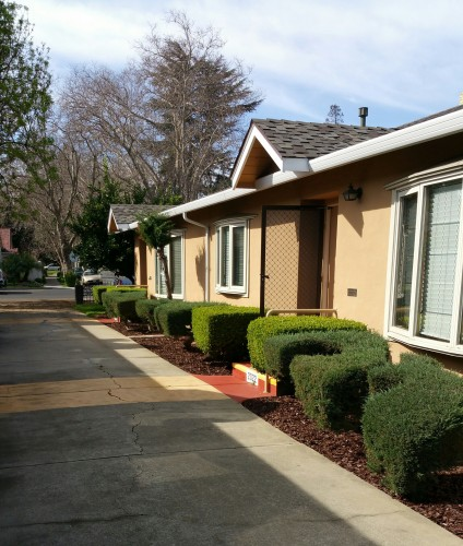Willow Rent: Willow Glen Duplex On Lincoln Ave.